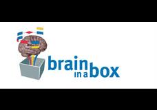 transform-hub-valued-client-brain-box